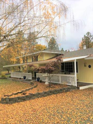 255 Queens Branch Road, Rogue River, OR 97537 (MLS #220128600) :: Vianet Realty