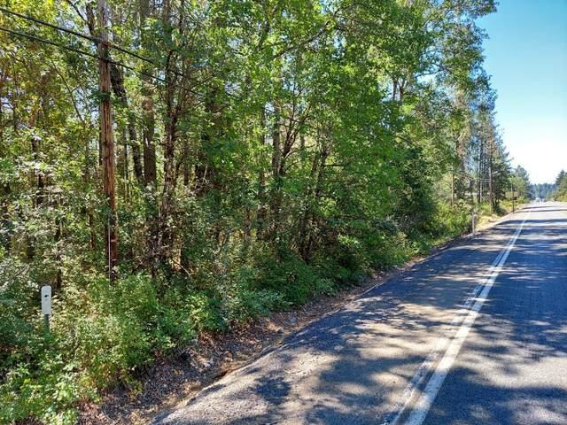 Redwood Highway, Cave Junction, OR 97523 (MLS #220128633) :: Vianet Realty
