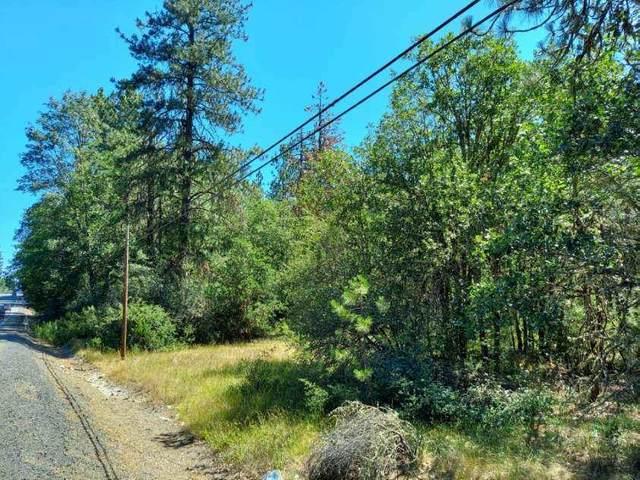 Redwood Highway, Cave Junction, OR 97523 (MLS #220128634) :: Vianet Realty