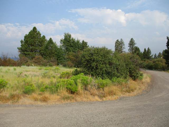 Glenn Drive #243123, Chiloquin, OR 97624 (MLS #220128747) :: The Riley Group