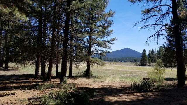 10130 Sprague River Road, Chiloquin, OR 97624 (MLS #220128767) :: The Riley Group