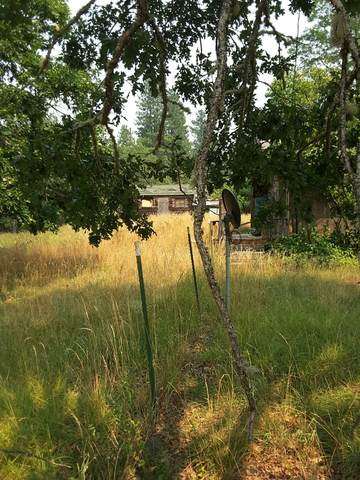 5120 Caves Highway, Cave Junction, OR 97523 (MLS #220128779) :: FORD REAL ESTATE