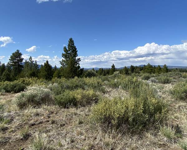 Lot 8 Bliss Road, Bonanza, OR 97623 (MLS #220128883) :: Team Birtola | High Desert Realty