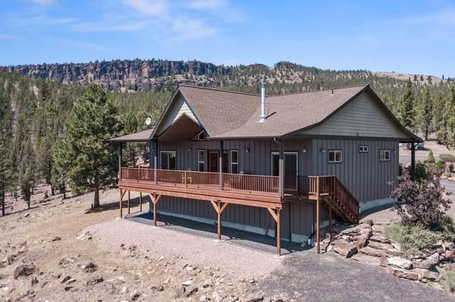 11803 Damselfly Lane, Prineville, OR 97754 (MLS #220129629) :: Chris Scott, Central Oregon Valley Brokers
