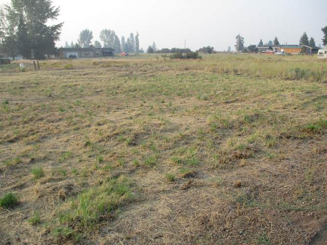 Pleasant  View Road, Chiloquin, OR 97624 (MLS #220129654) :: Team Birtola | High Desert Realty
