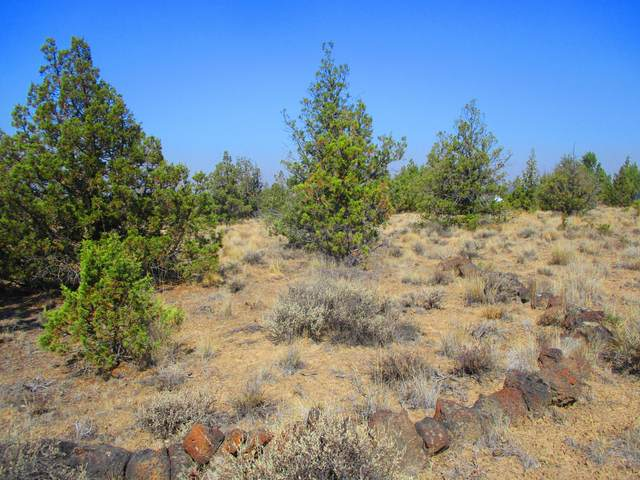 TL1900 SE Cayuse Road, Prineville, OR 97754 (MLS #220129700) :: The Riley Group