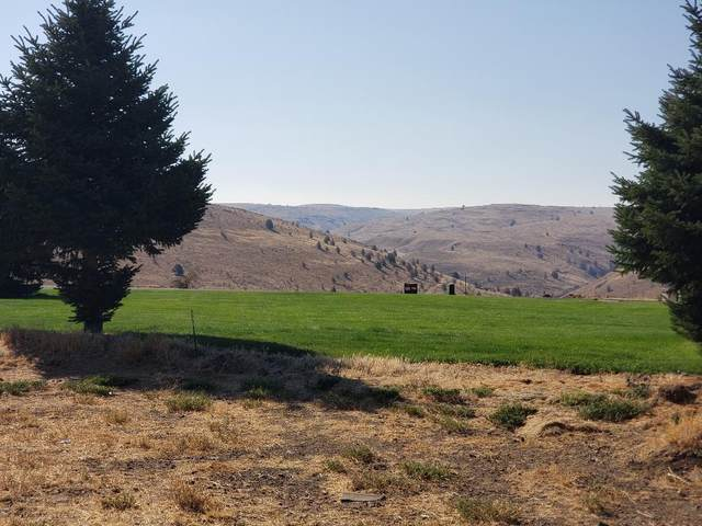 1430 Fish Camp Road, Maupin, OR 97037 (MLS #220129806) :: Premiere Property Group, LLC