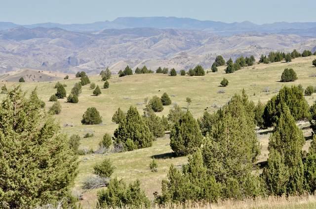 0000 Hwy 218 Highway, Antelope, OR 97001 (MLS #220130434) :: Premiere Property Group, LLC