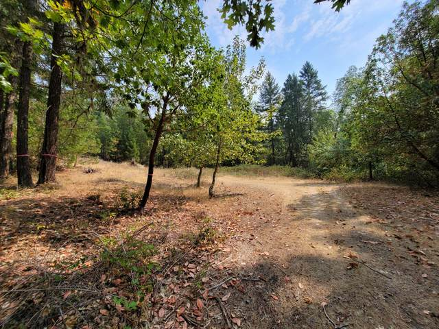 Ferry Road, Grants Pass, OR 97526 (MLS #220131456) :: The Riley Group