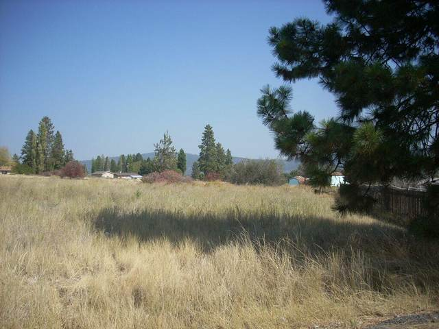 Fleetwood Place, Chiloquin, OR 97624 (MLS #220131501) :: Team Birtola | High Desert Realty