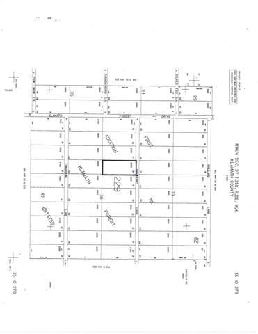 Lot 16 Pheasant Lane, Chiloquin, OR 97624 (MLS #220132083) :: Team Birtola | High Desert Realty