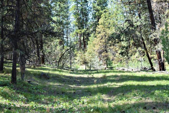 N Fs 42 Road, Paulina, OR 97751 (MLS #220132139) :: Coldwell Banker Sun Country Realty, Inc.