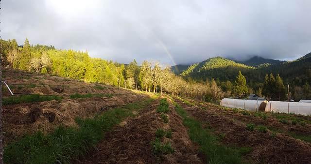 5710 Coyote Creek Road, Wolf Creek, OR 97497 (MLS #220132148) :: Vianet Realty