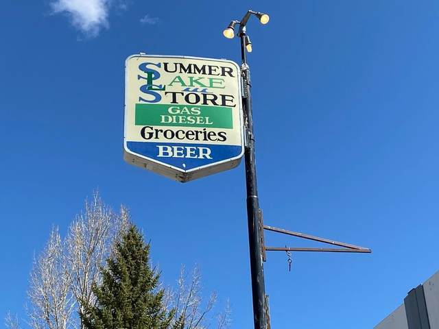 54128 Highway 31, Summer Lake, OR 97640 (MLS #220132263) :: Arends Realty Group