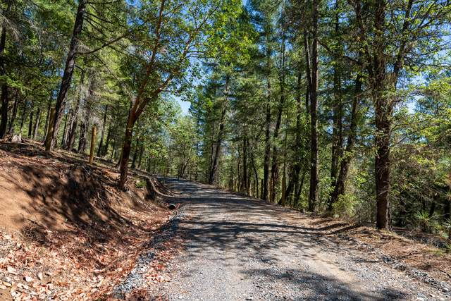 0 E Evans Creek Road, Central Point, OR 97502 (MLS #220132340) :: Premiere Property Group, LLC