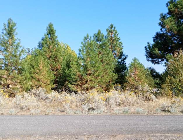 0 Plehn Pines Drive, Chiloquin, OR 97624 (MLS #220132658) :: Team Birtola | High Desert Realty