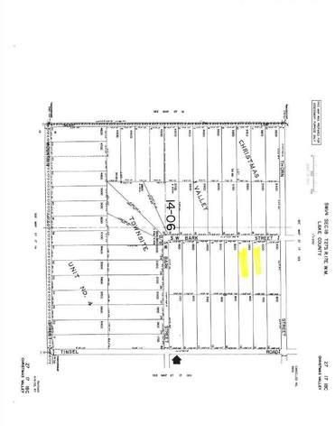 Bark Loop, Christmas Valley, OR 97641 (MLS #220133096) :: The Bifano Home Team