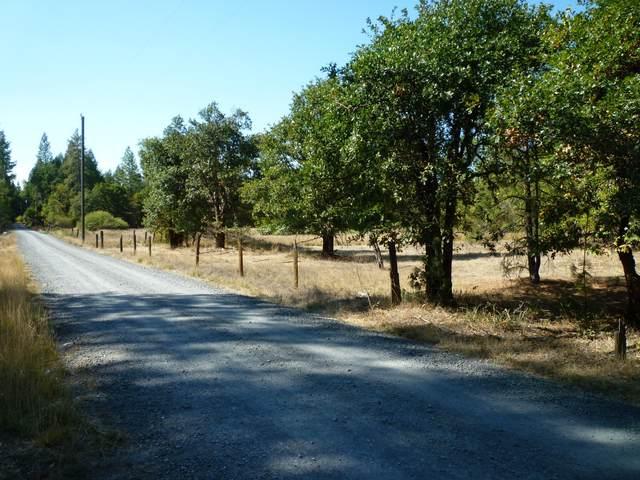 4125 Dick George Road, Cave Junction, OR 97523 (MLS #220133173) :: Vianet Realty