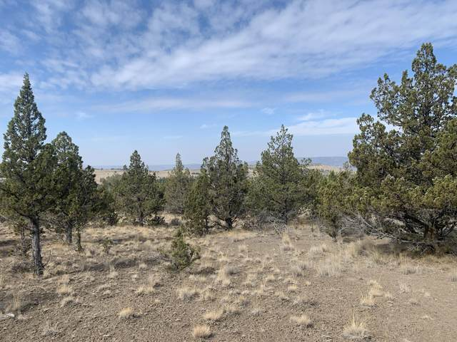 TL 1700 SE Wilderness Road, Prineville, OR 97754 (MLS #220133193) :: The Bifano Home Team