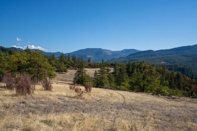 0 E Antelope Road, Eagle Point, OR 97524 (MLS #220133265) :: FORD REAL ESTATE