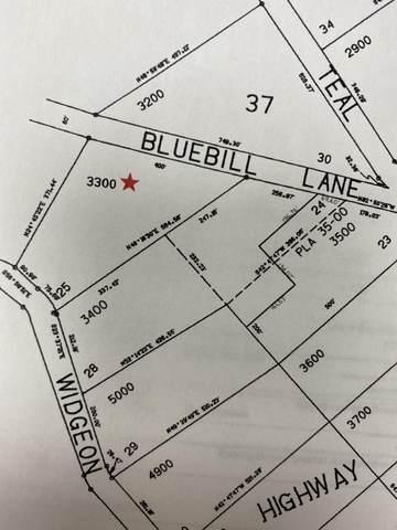 Bluebill Lane, Bonanza, OR 97623 (MLS #220133658) :: The Bifano Home Team