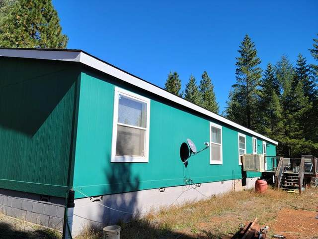 117 Rubin Drive, Cave Junction, OR 97523 (MLS #220133808) :: FORD REAL ESTATE