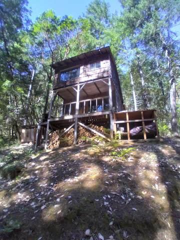 1000 Quartz Creek Road, Grants Pass, OR 97526 (MLS #220133895) :: Vianet Realty