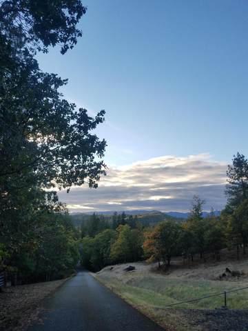 Deer Haven Lane, Grants Pass, OR 97527 (MLS #220134018) :: Vianet Realty