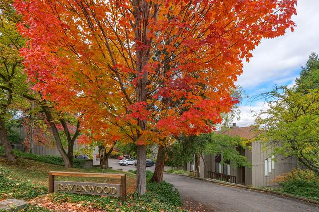 315 Ravenwood Place, Ashland, OR 97520 (MLS #220134149) :: Bend Homes Now