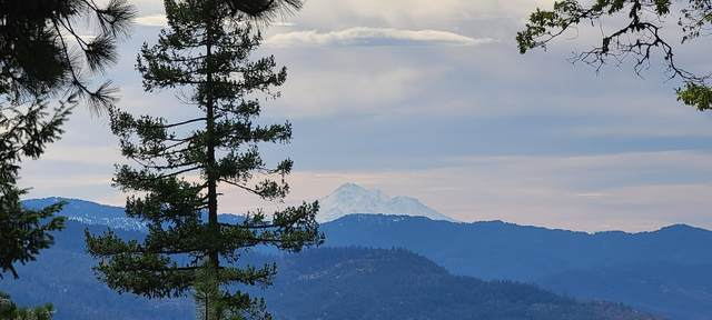 Dead Indian Memorial Road, Ashland, OR 97520 (MLS #220134154) :: Bend Homes Now