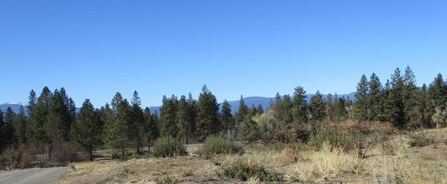 NKA Lot 103 Highway 62, Chiloquin, OR 97624 (MLS #220134177) :: Coldwell Banker Sun Country Realty, Inc.