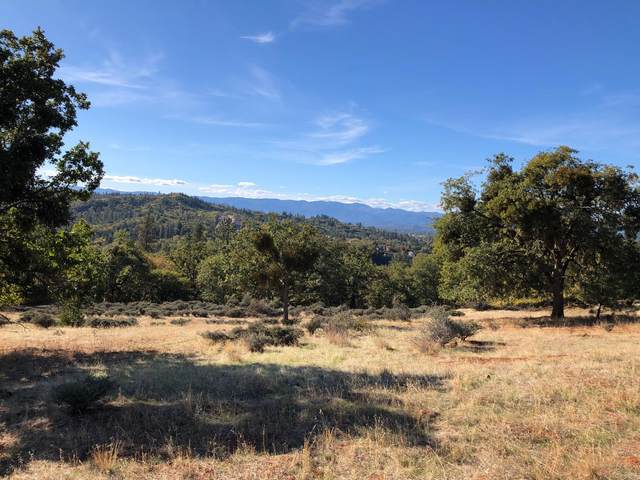 0 Trollview Drive Tl401, Grants Pass, OR 97527 (MLS #220134190) :: Vianet Realty
