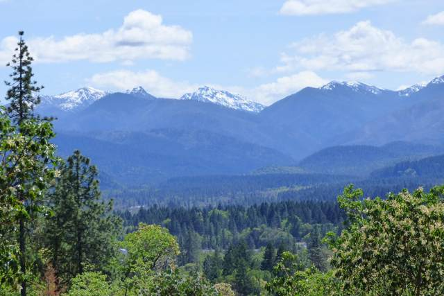 173 Walters Drive, Cave Junction, OR 97523 (MLS #220134357) :: Bend Relo at Fred Real Estate Group