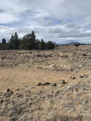 Lot 111 Rim Drive, Chiloquin, OR 97639 (MLS #220134462) :: Coldwell Banker Bain