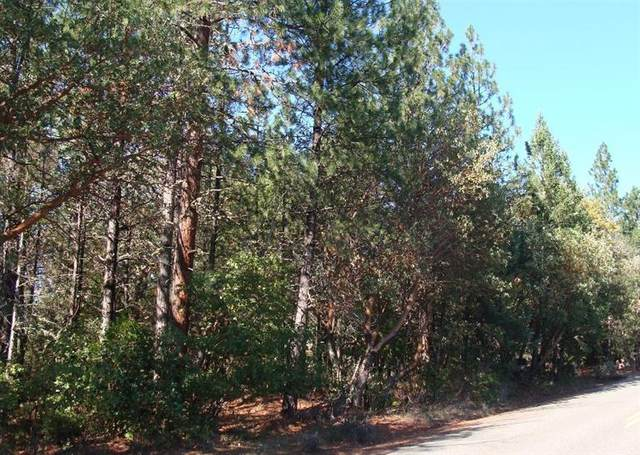 0 China Gulch Road, Jacksonville, OR 97530 (MLS #102951363) :: FORD REAL ESTATE