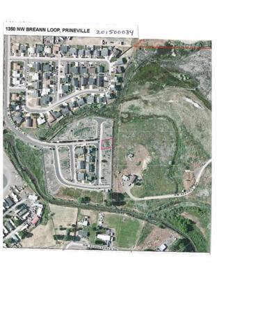 1350 NW Breann Loop, Prineville, OR 97754 (MLS #201500084) :: Birtola Garmyn High Desert Realty