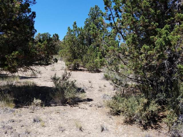 0-TL 4100 SE Loafer Road, Prineville, OR 97754 (MLS #201607703) :: Team Birtola | High Desert Realty