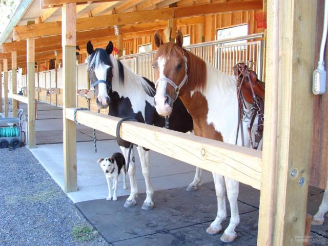 69437 Crooked Horseshoe, Sisters, OR 97759 (MLS #201703177) :: Birtola Garmyn High Desert Realty