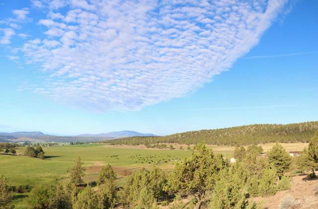 4550 NE Johnson Creek Road, Prineville, OR 97754 (MLS #201805717) :: Team Birtola | High Desert Realty