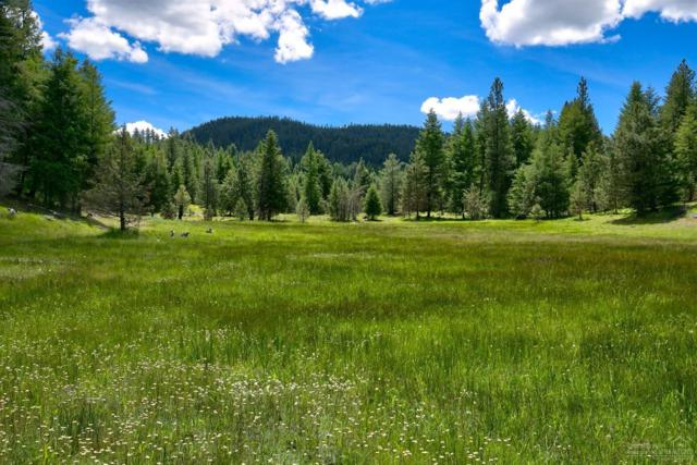 0 NE Mill Creek Road Tl 202, Prineville, OR 97754 (MLS #201806307) :: Pam Mayo-Phillips & Brook Havens with Cascade Sotheby's International Realty