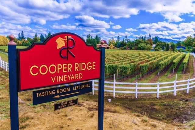 1389 Old Garden Valley Road, Roseburg, OR 97471 (MLS #201806674) :: Fred Real Estate Group of Central Oregon