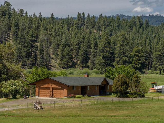 8023 SE Wolf Creek Road, Paulina, OR 97751 (MLS #202002244) :: The Ladd Group