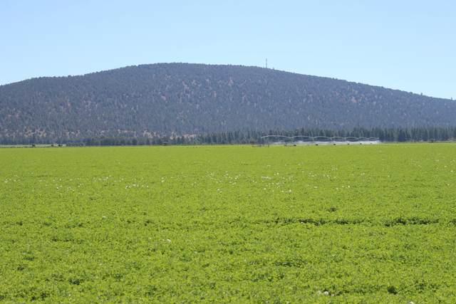 2509 Swan Lake Road, Dairy, OR 97625 (MLS #220102143) :: Berkshire Hathaway HomeServices Northwest Real Estate
