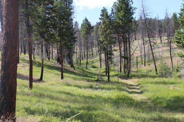 Corral Gulch Road, Canyon City, OR 97820 (MLS #220104153) :: Premiere Property Group, LLC