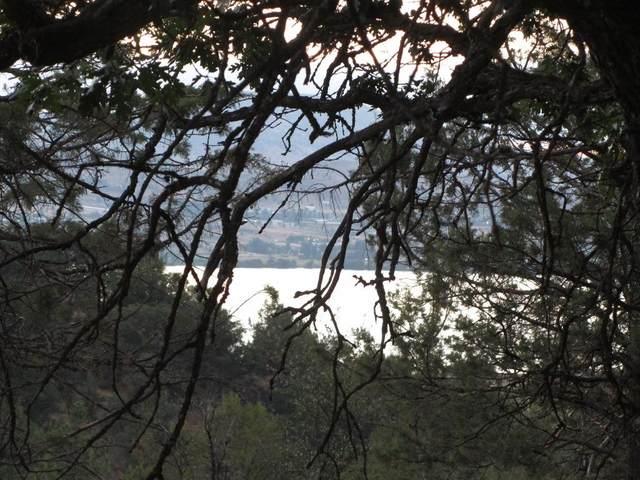 Murrelet Road Lot 1183, Klamath Falls, OR 97601 (MLS #220106487) :: Team Birtola   High Desert Realty