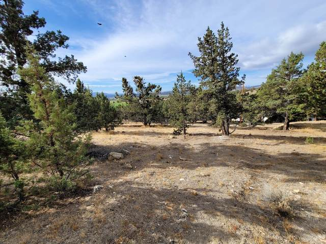 0-TL6200 NW King Avenue, Prineville, OR 97754 (MLS #220106949) :: The Ladd Group
