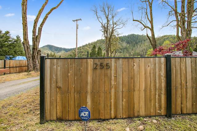 255 Rogue River Highway, Gold Hill, OR 97525 (MLS #220107879) :: The Payson Group