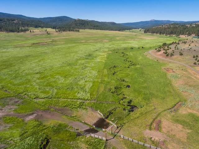 21762 Badger Creek Road, Mitchell, OR 97750 (MLS #220110775) :: Premiere Property Group, LLC