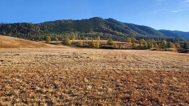 6469 Dark Hollow Road, Medford, OR 97501 (MLS #220111350) :: Team Birtola | High Desert Realty