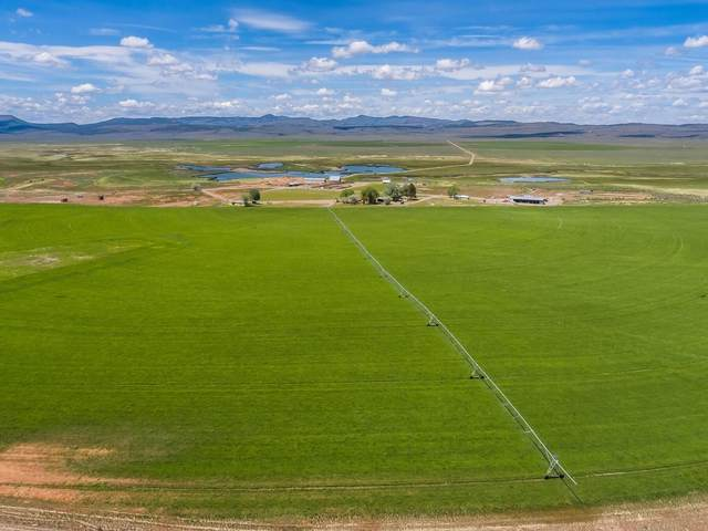 55552 S Gi Road, Prineville, OR 97754 (MLS #220112156) :: Schaake Capital Group